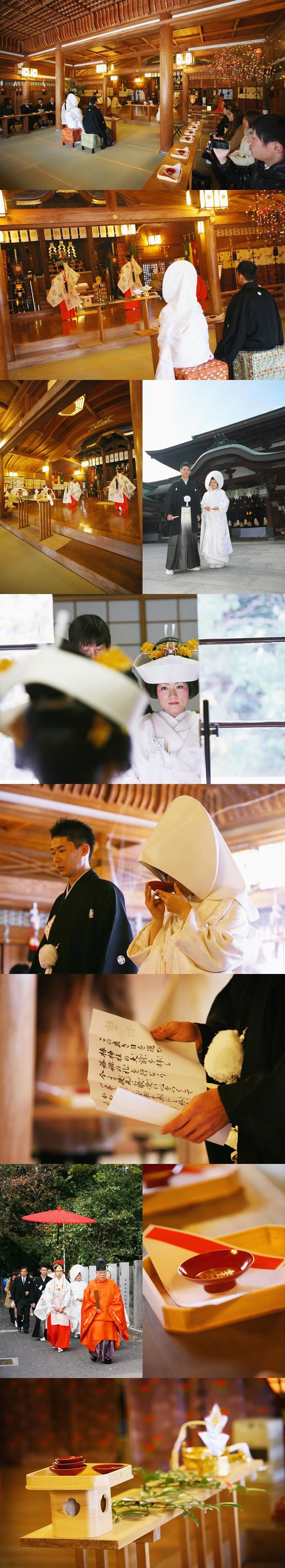 椿神社フォトギャラリー
